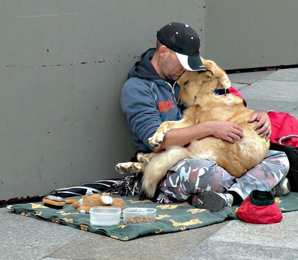 """""""Chó không chê chủ nghèo""""."""