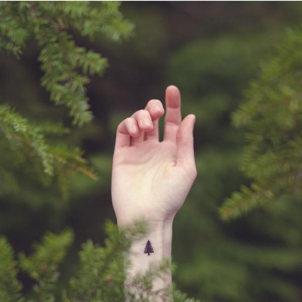 Một hình xăm cây thông nói lên rằng: bạn là người lãng du.