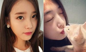 Sao Hàn 2/9: IU mắt to da mịn, Sulli hôn mèo cưng lãng mạn