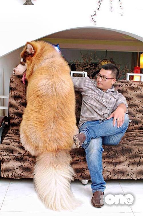 Anh Thiện bên chú chó khổng lồ của mình.