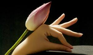 Trắc nghiệm: Hình dáng bàn tay tiết lộ cá tính của bạn