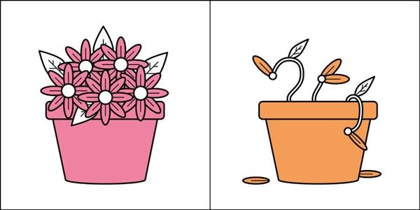 Người chăm chỉ hay lười biếng đều thể hiện ở chậu hoa họ trồng.
