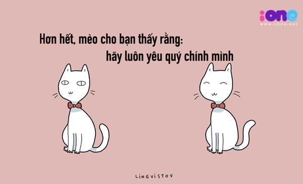 12-dieu-ban-co-the-hoc-duoc-tu-nhung-chu-meo-quai-chieu-10