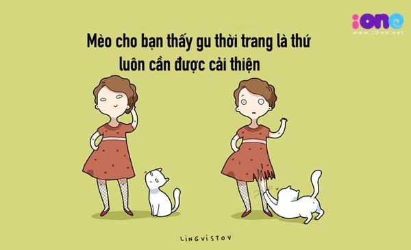 12-dieu-ban-co-the-hoc-duoc-tu-nhung-chu-meo-quai-chieu-6