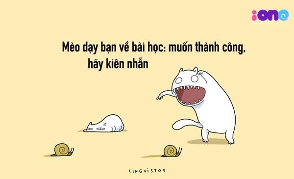 12-dieu-ban-co-the-hoc-duoc-tu-nhung-chu-meo-quai-chieu-7