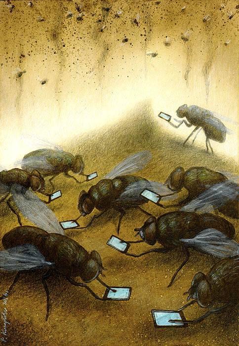 Chúng ta đôi khi như những con ruồi, chỉ chầu chực vào