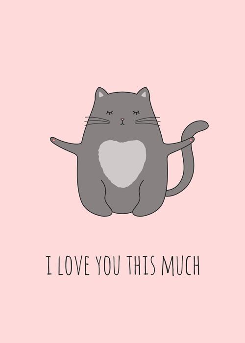"""Một chú mèo miu với dòng nhắn gửi: """"Tớ yêu cậu nhiều bằng chừng này này""""."""