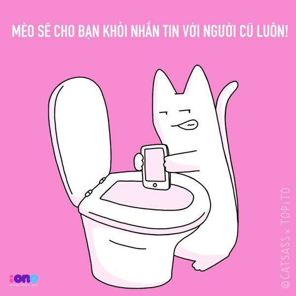 con-meo-7-5760-1456738242.jpg
