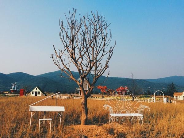 Thuan-Phuoc-Field-13-3805-1461666136.jpg