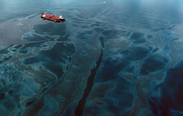 Ngày 24/3/1989, tàu chở dầu Exxon Valdez bị mắc cạn ở bờ biển Prince William Sound, Alaska, làm tràn ra 34.000 tấn dầu trị giá 38 triệu USD. Năm 2003, một nhóm nghiên cứu của trường ĐH North Carolina đưa ra báo cáo cho thấy nhiều loài sinh vật biển như rái cá, vịt harlequin, cá voi sát thủ đã bị sụt giảm với số lượng lớn và môi trường sống ven biển sẽ phải mất khoảng 30 năm để khôi phục. Ảnh: Natalie Fobes/Corbis.