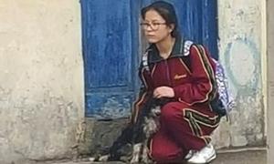 Nữ sinh dùng áo che mưa cho chú chó lang thang