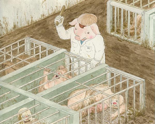 Lợn nông dân nuôi nhốt con người trong những chuồng chật hẹp.