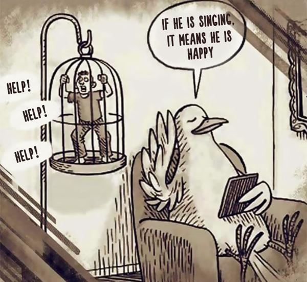 Con người thay đổi số phận với những chú chim.