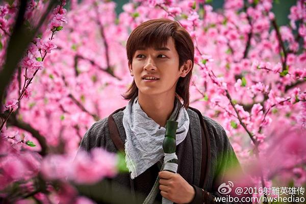 dan-dien-vien-anh-hung-xa-dieu-2016-gay-xon-xao-5