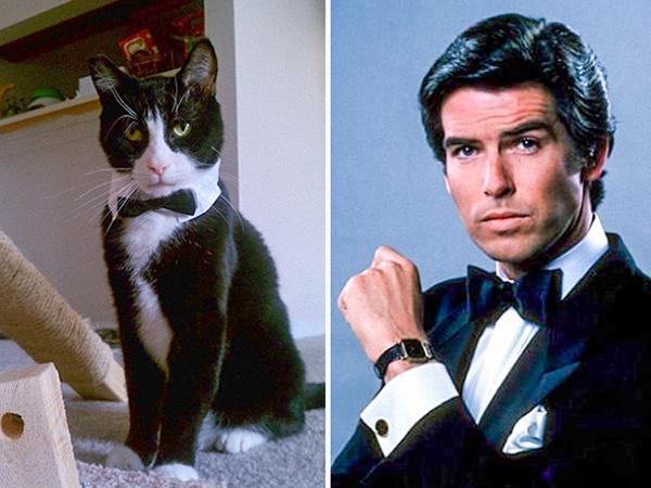 James Bond cực kỳ điển trai của tài tửPierce Brosnan