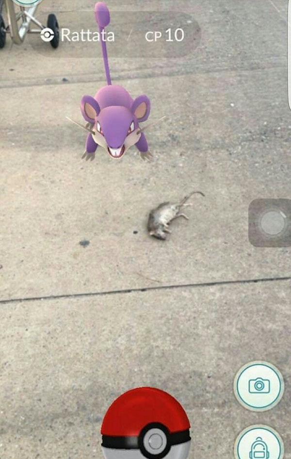 voi-hoi-bat-pokemon-nhung-chuyen-oai-am-nay-co-the-xay-ra-6