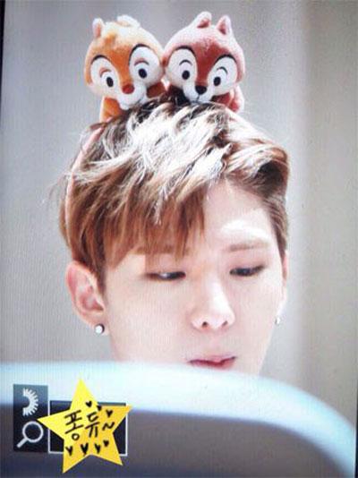 10-idol-kpop-de-thuong-giong-het-chuot-hamster-2-2