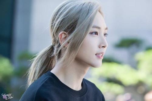 7-idol-kpop-duoc-ca-ngoi-co-dien-mao-2d-2