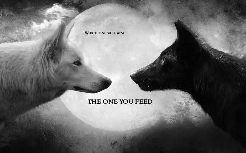 Trong mỗi chúng ta có 2 con sói