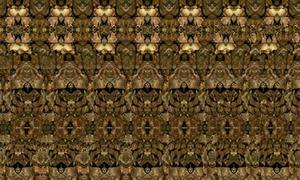 Xem ảnh ảo 3 chiều đoán hình (2)