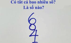 Câu hỏi đếm số khiến 99% người trả lời sai