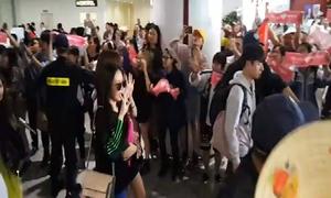Apink đội nón lá fan Việt tặng, tươi cười vẫy tay ở sân bay