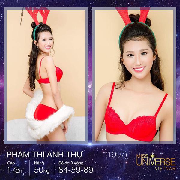 8-my-nhan-co-chieu-cao-dang-ne-nhat-hoa-hau-hoan-vu-2017-2