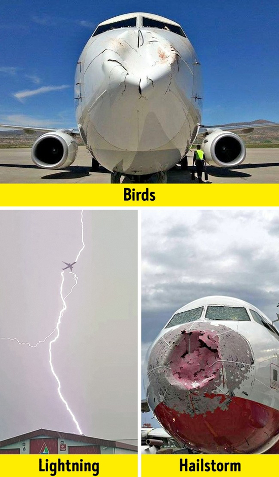 Những sự thật hành khách cần biết về các chuyến bay và phi công - 7