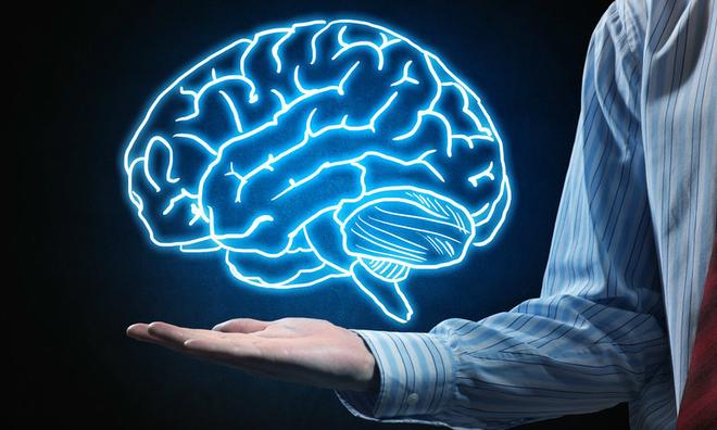 Trắc nghiệm: Bộ phận nào trong não bộ của bạn phát triển nhất?
