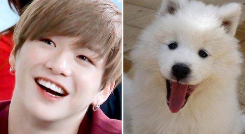 Lật tấy thói quen khiến Kang Daniel có biệt danh cún con