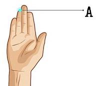 Bói vui: Độ dài ngón trỏ và ngón đeo nhẫn bật mí điểm thú vị về con người bạn
