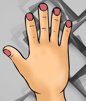Bói vui: Thuật xem tướng sẽ chỉ rõ bạn là ai qua hình dáng bàn tay