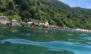 Cơ hội nhận 20 triệu đồng khi tham gia cuộc thi 'Biển Việt Nam xanh'