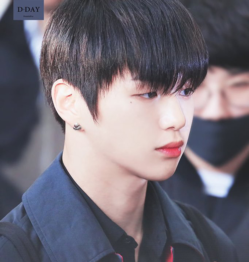 Chỉ nhờ việc nhuộm tóc đen mà Kang Daniel đã lọt top tìm kiếm ở Hàn.