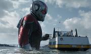 Siêu phẩm tiếp theo của Marvel liên tục đứng đầu bảng doanh thu