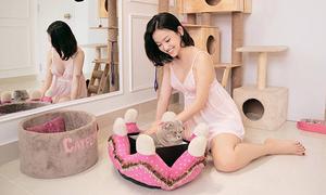 Sướng như thú cưng nhà sao Việt: Có phòng riêng, mặc đồ hiệu sang chảnh
