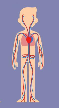 Trắc nghiệm: Chọn bộ phận cơ thể quan trọng nhất để khám phá cá tính của bạn - 2