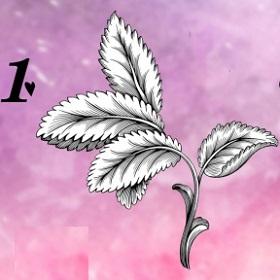 Trắc nghiệm: Khám phá ngôn ngữ tình yêu của bạn qua loài hoa ưa thích