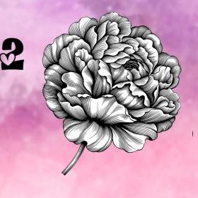 Trắc nghiệm: Khám phá ngôn ngữ tình yêu của bạn qua loài hoa ưa thích - 1