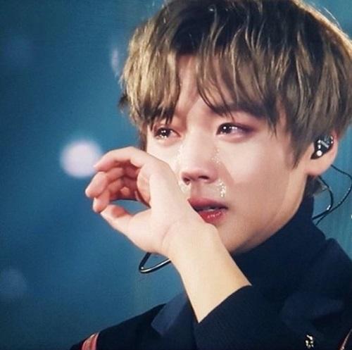 Fan của Ji Hoon không thể kìm lòng mỗi lần thấy anh chàng rơi lệ trên sân khấu.