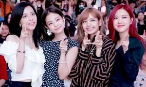 Netizen phân tích lý do Black Pink chỉ có thể quảng bá 1 tuần ở Hàn