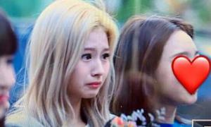 Sana bị chỉ trích đến bật khóc, fan đổ lỗi JYP 'tham tiền'