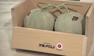 Hai quả dưa lưới được bán hơn 45.000 USD ở Nhật