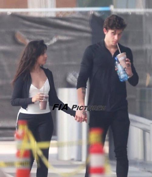 Shawn Mendes - Camila Cabello bị chỉ trích làm lố khi liên tục ôm hôn nơi công cộng - 2