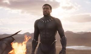 Lý do Black Panther được trở về đầu tiên sau cú búng tay