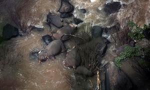 6 con voi chết vì cứu nhau ở 'thác địa ngục'