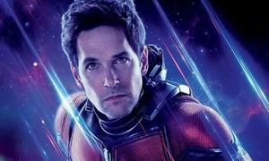 Tương lai mơ hồ của Ant-Man ở vũ trụ Marvel